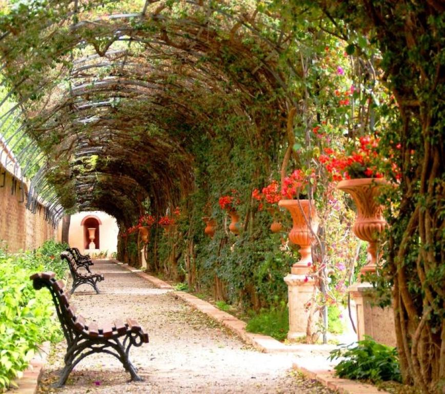 Monforte gardens in valencia curiosities in spain for Fotos de jardines bonitos